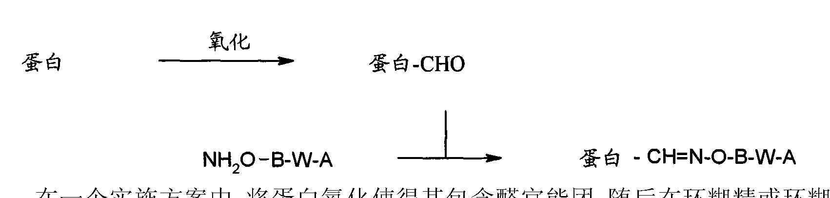 Figure CN102112157BD00463