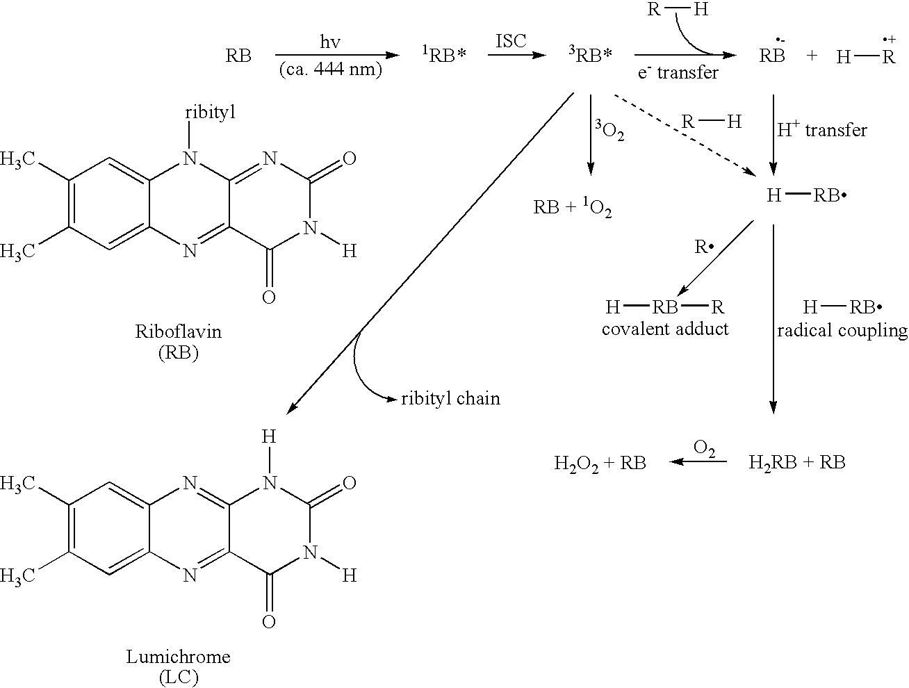 Figure US20050282143A1-20051222-C00004