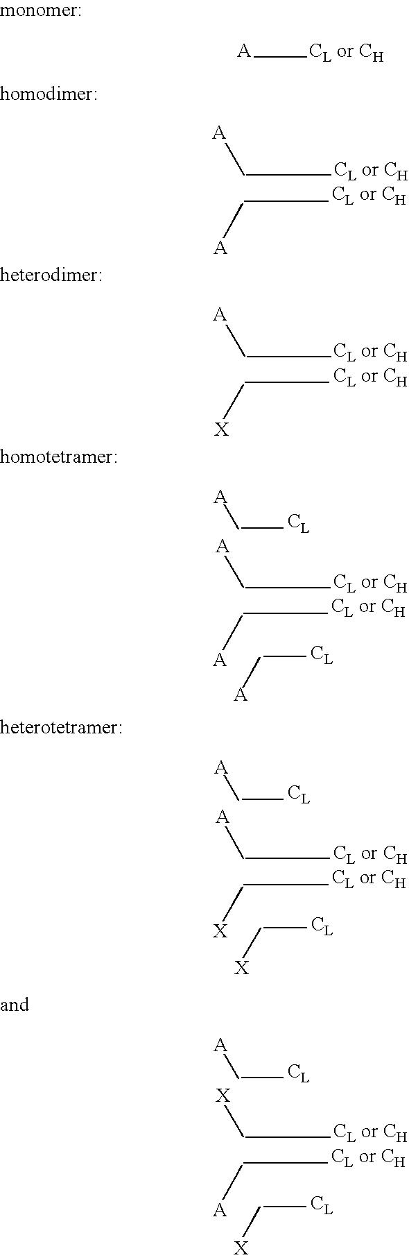 Figure US20070041969A1-20070222-C00002
