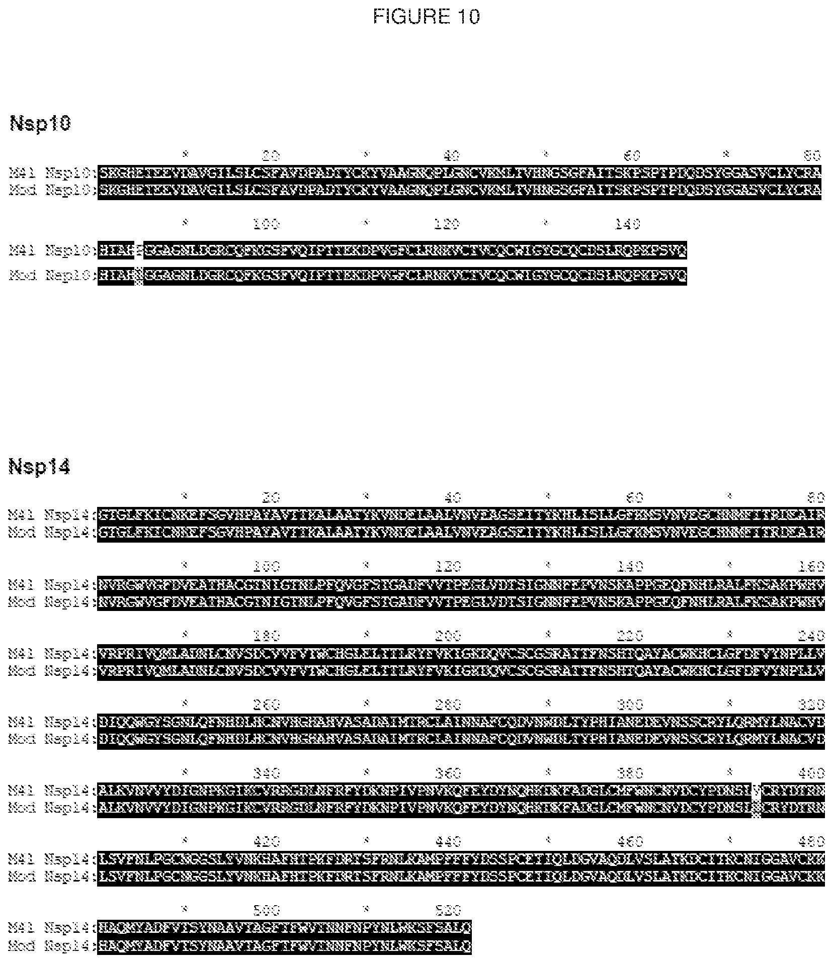 Corona Virus European Patent