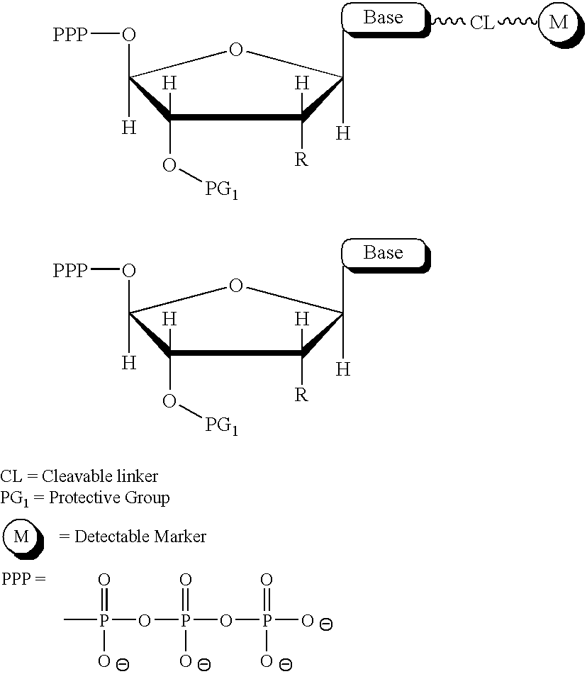 Figure US08481259-20130709-C00001