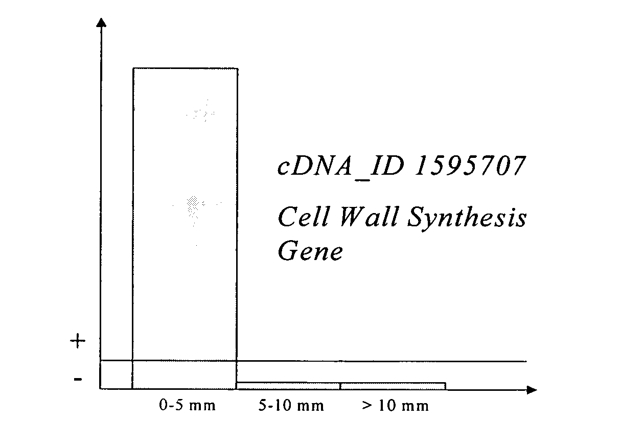 Us20060150283a1 Sequence Determined Dna Fragments And Printed Circuit Board Stock Image F003 0396 Science Photo Library Figure 20060706 P00005