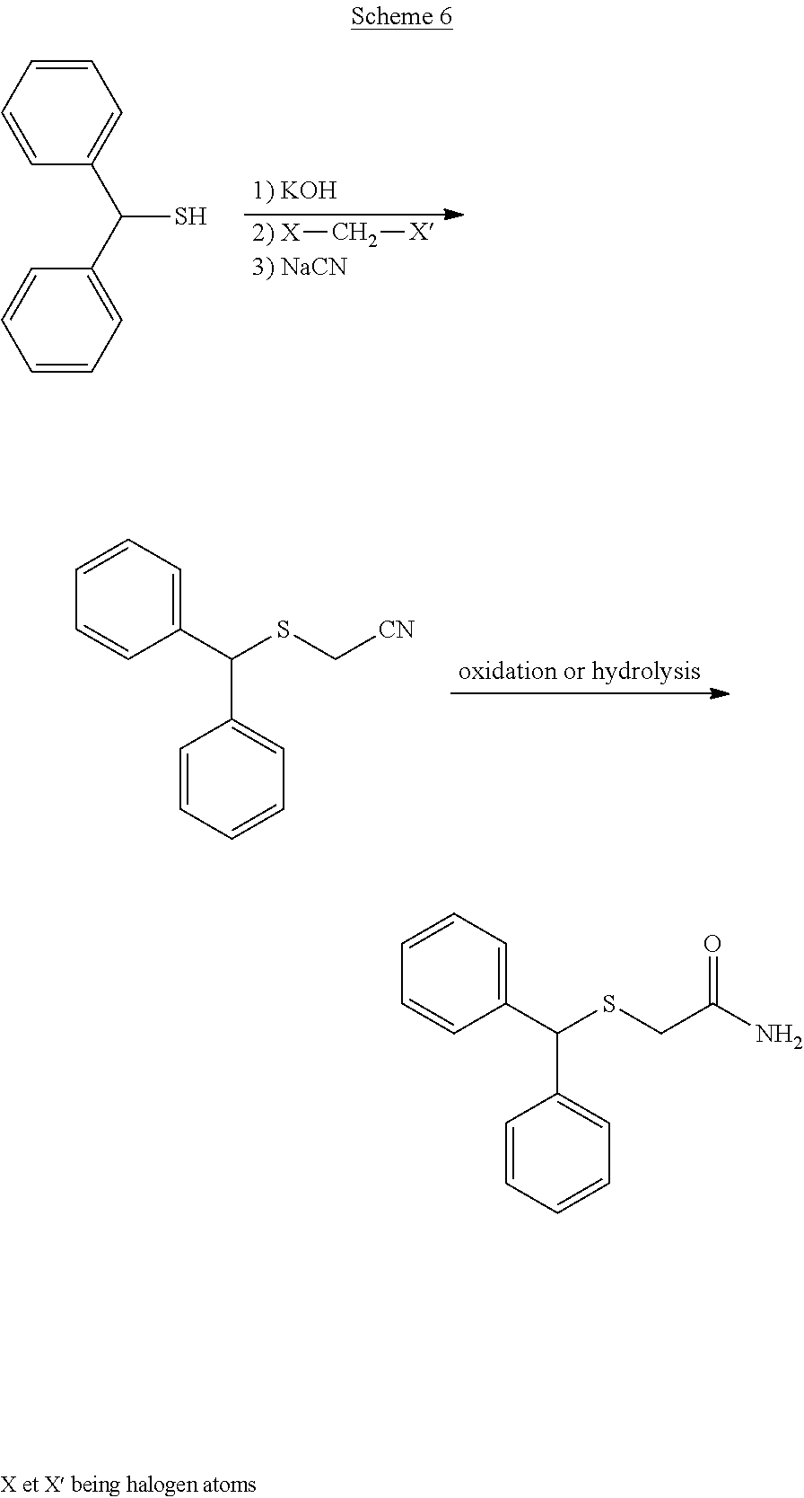Ivermectin for dogs fleas