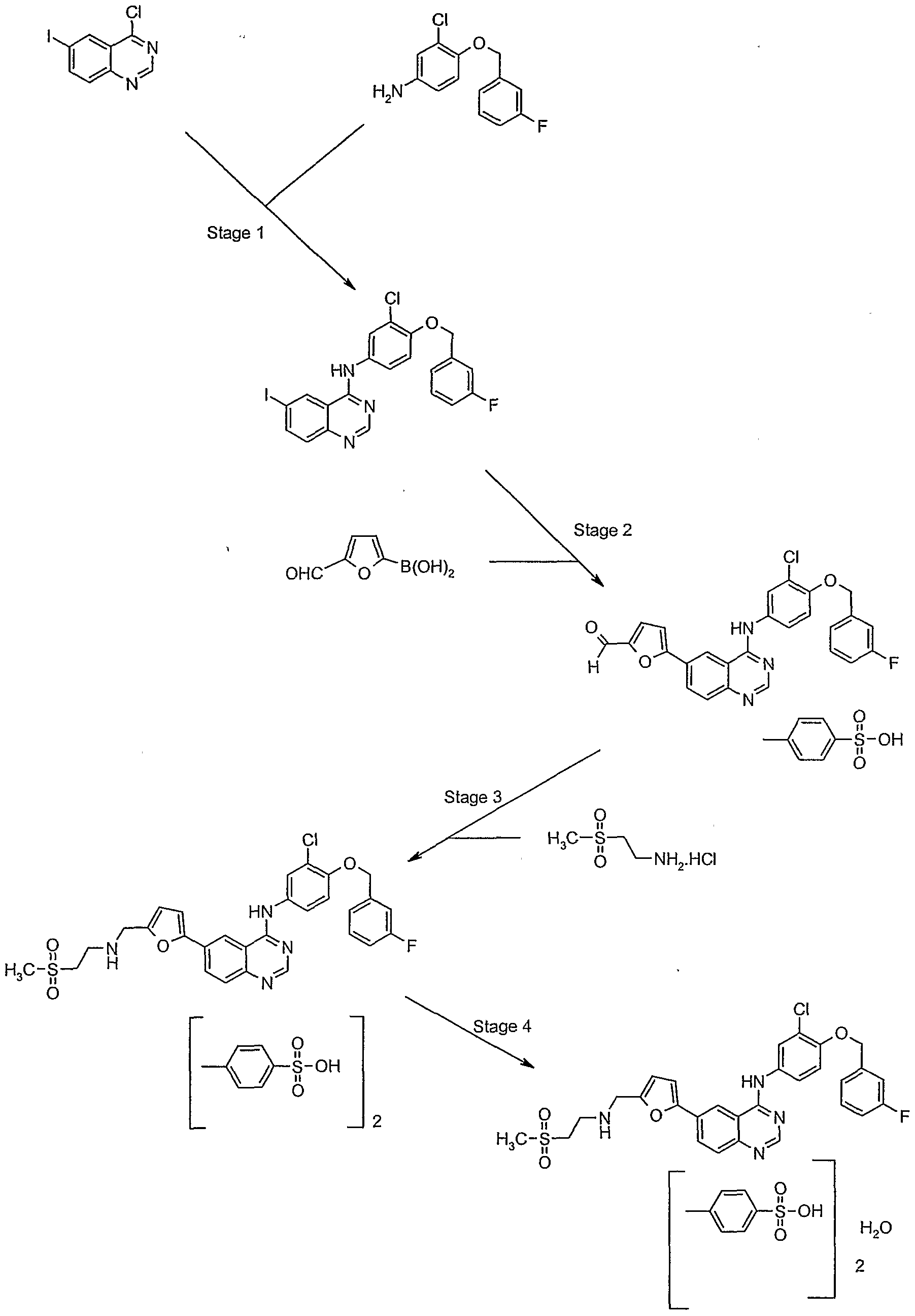 wo2006061253a2 bination of tyrosine kinase inhibitor and her 2 Ohio Electrical Products figure imgf000049 0001