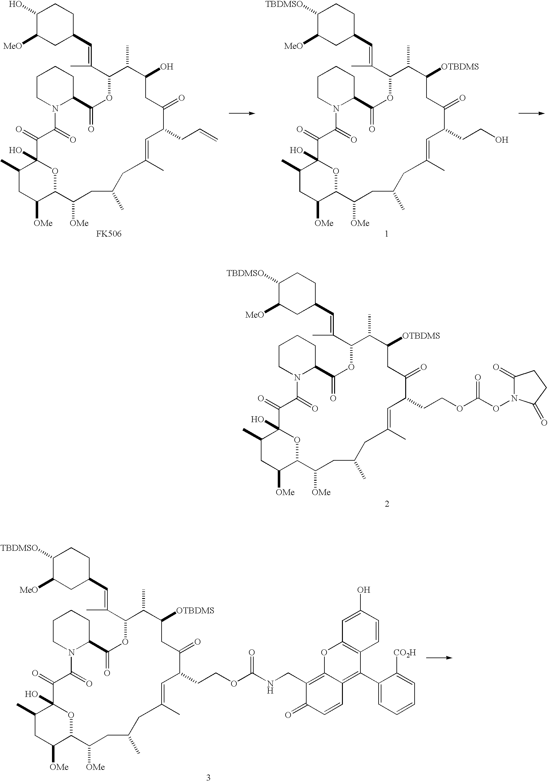 Figure US20040082515A1-20040429-C00038