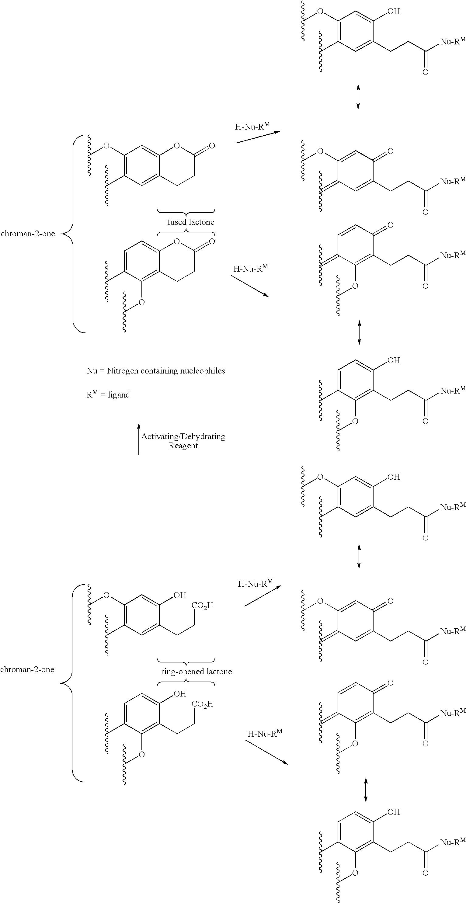 Figure US20060204990A1-20060914-C00002