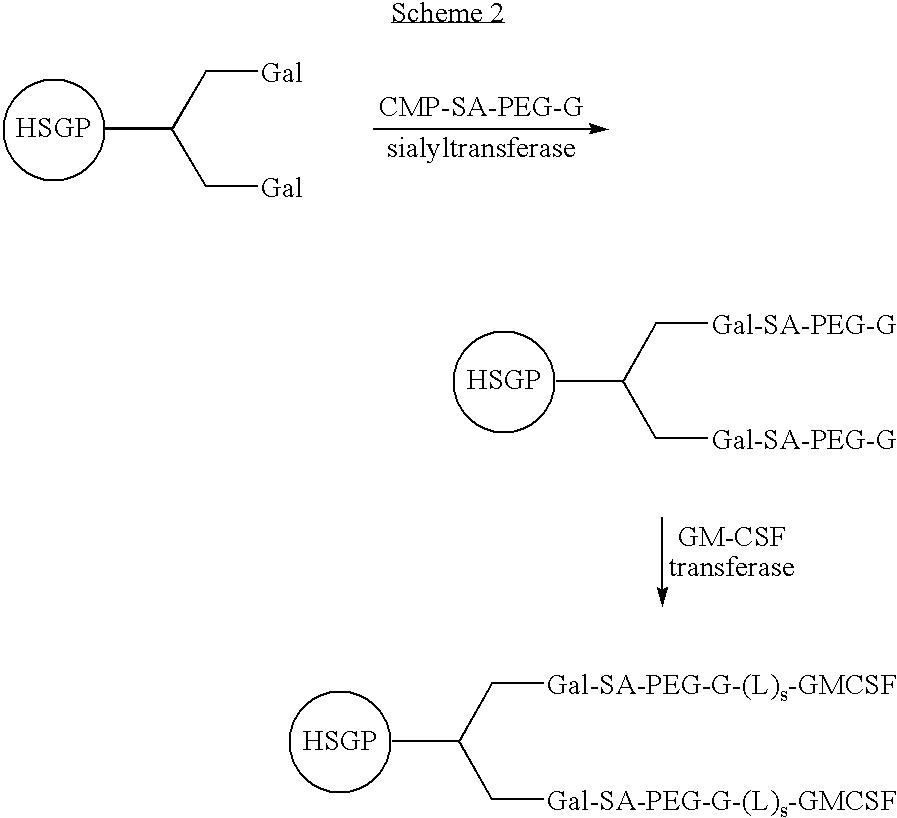 Figure US20080242846A1-20081002-C00011