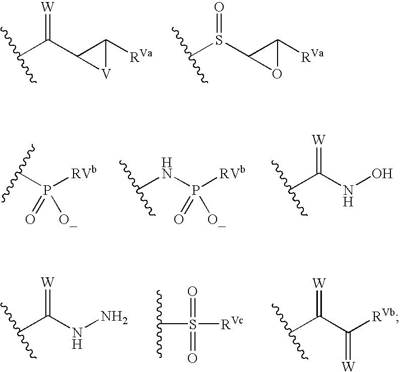 Figure US20040072849A1-20040415-C00019