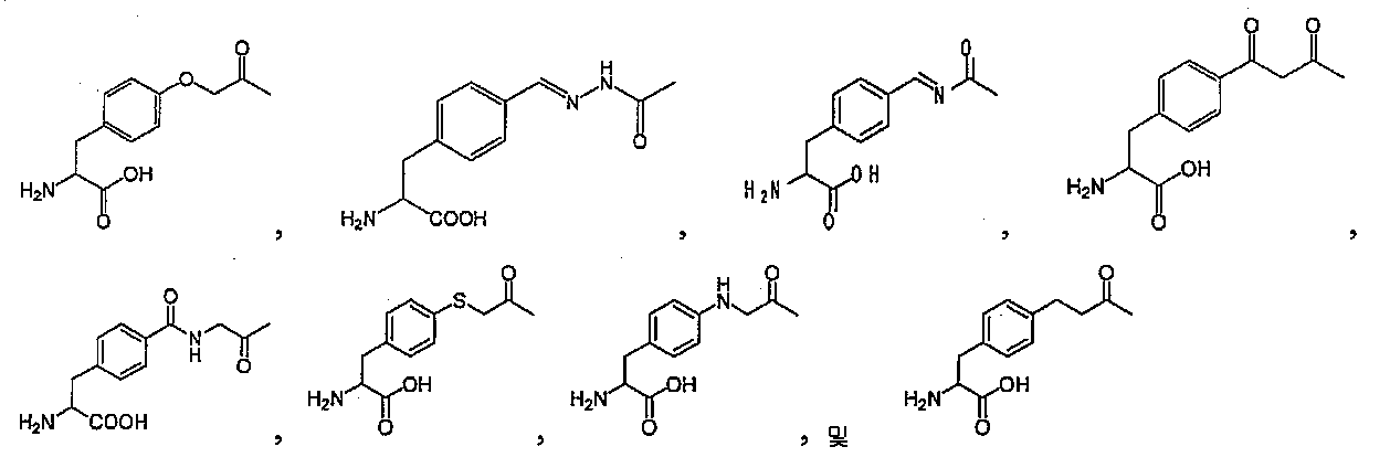 Figure 112009066150911-pct00011