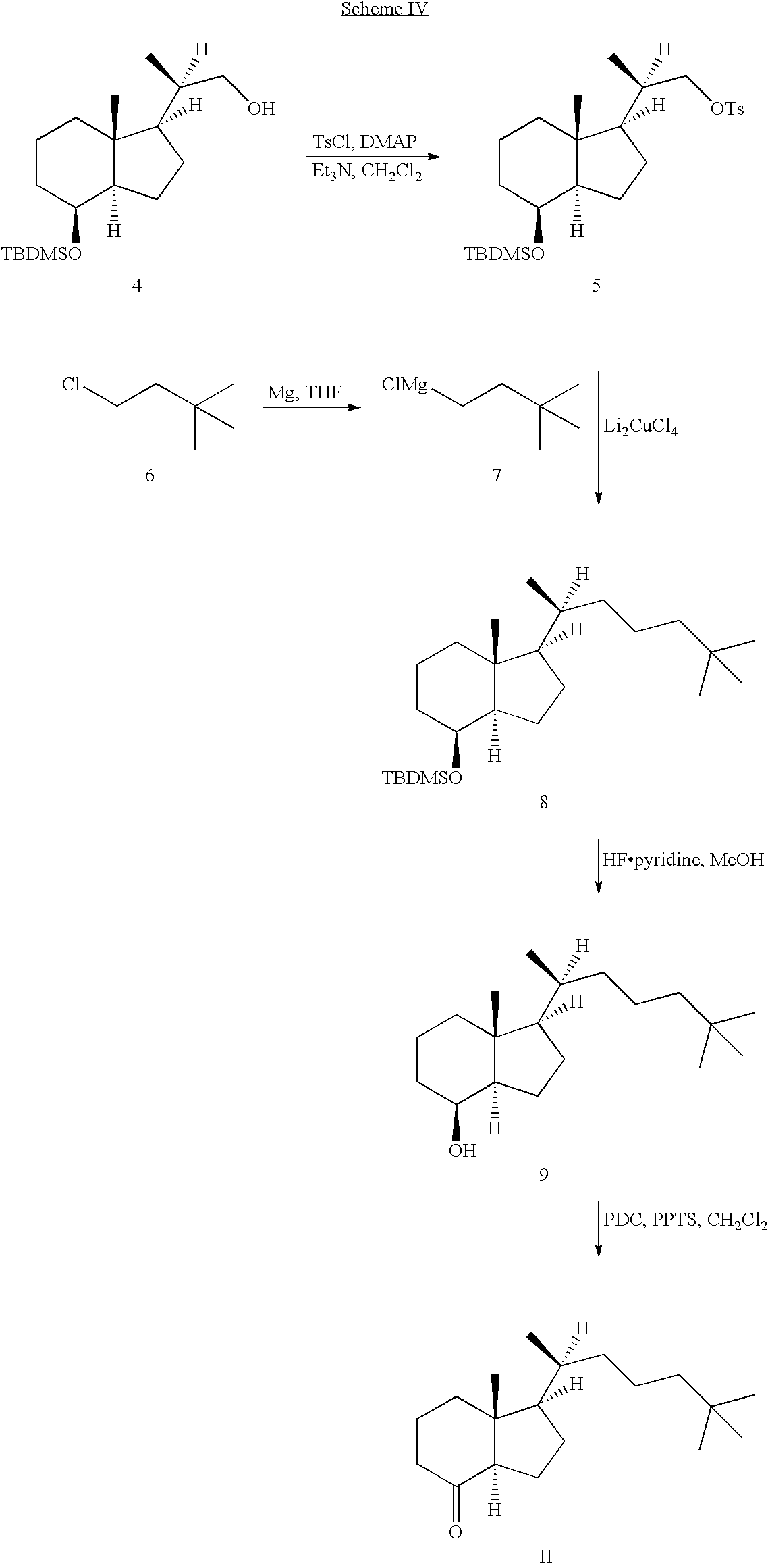 US20050119242A1 - Vitamin D analogs for obesity prevention