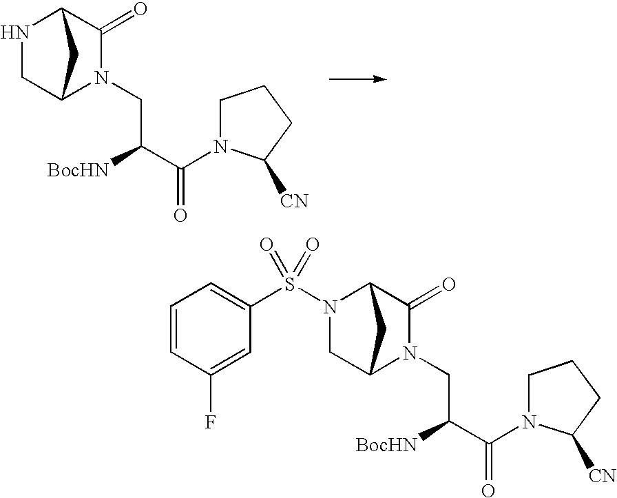 Figure US20100009961A1-20100114-C00232
