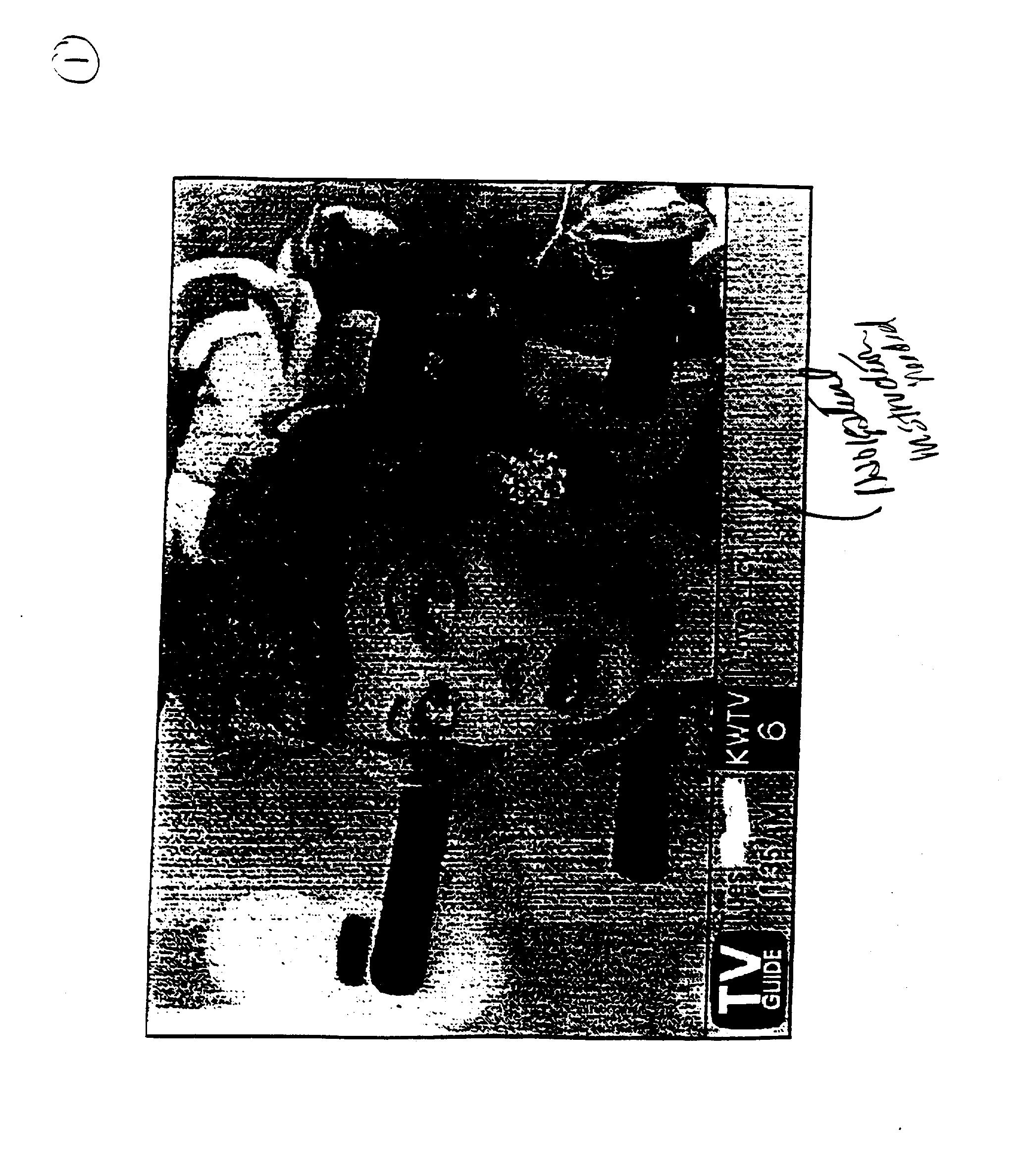 Figure US20030115599A1-20030619-P00009