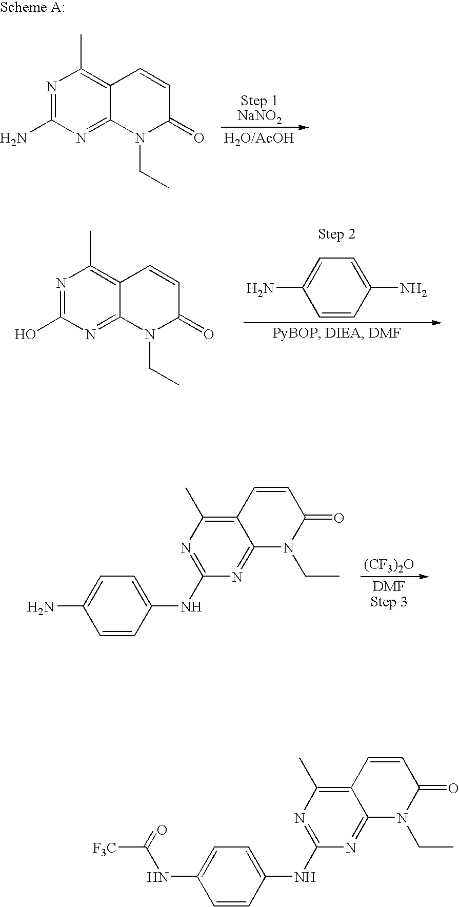 Figure US20100150827A1-20100617-C00122