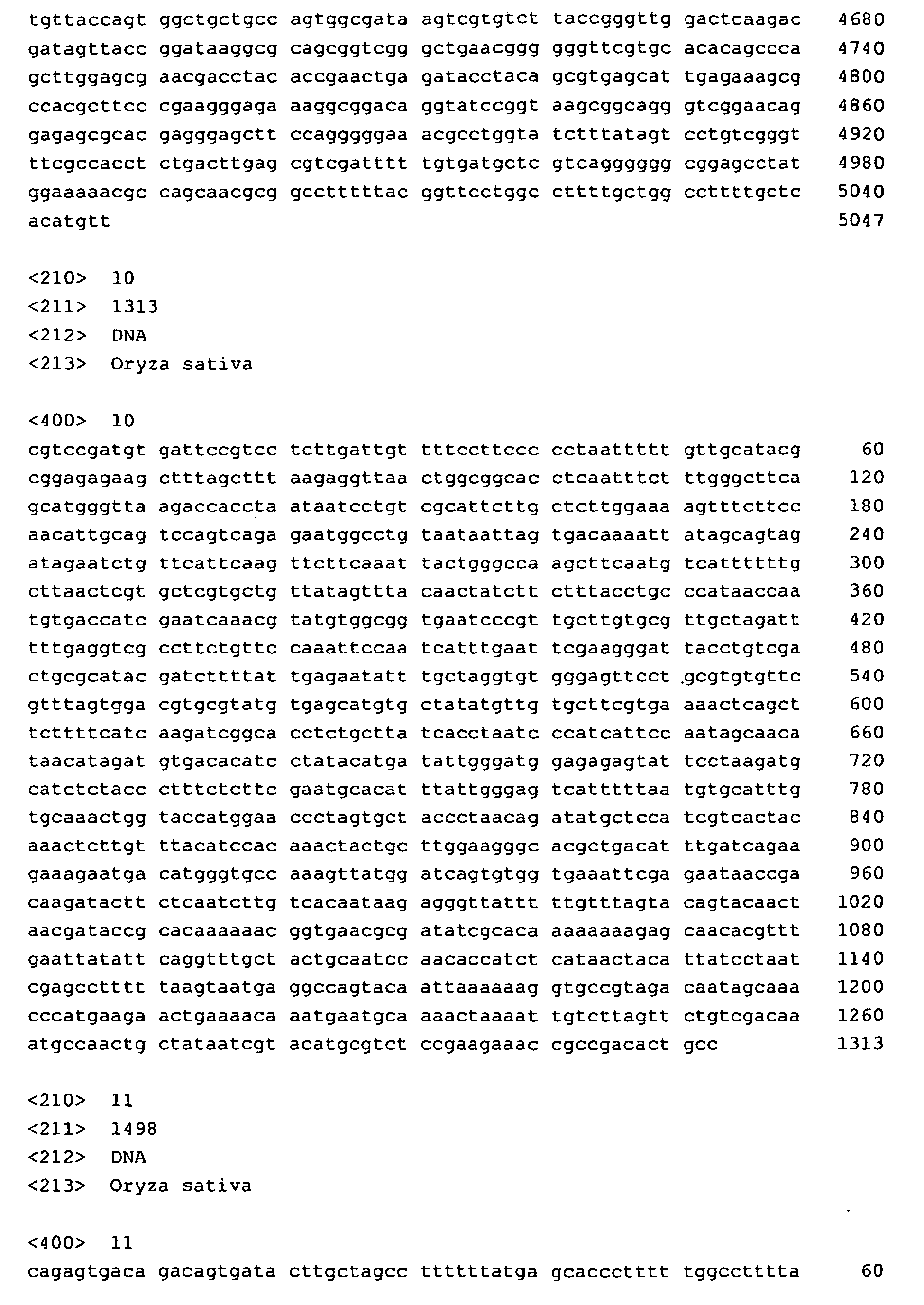 EP A1 Method for isolation of transcription termination