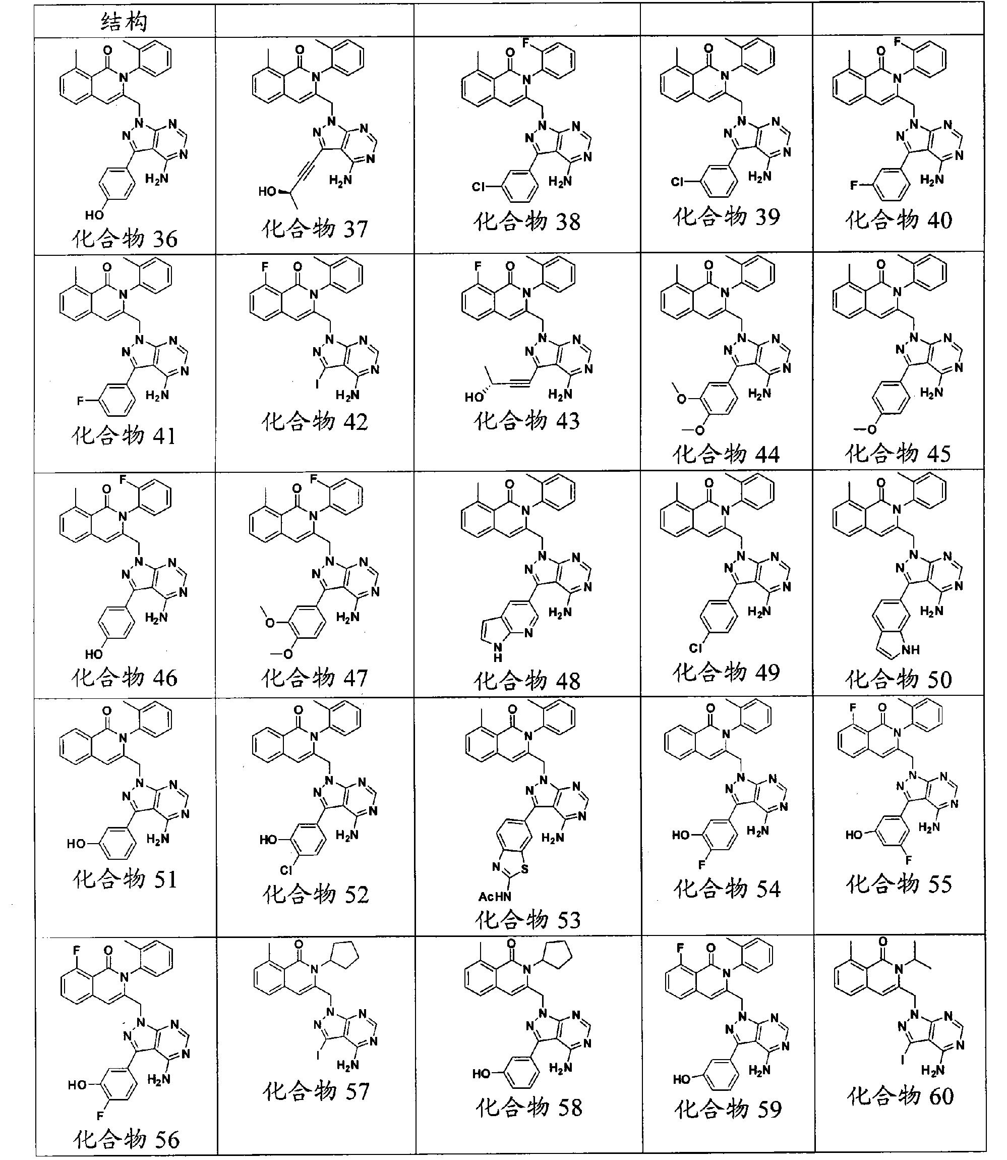 Figure CN101965335BD00991