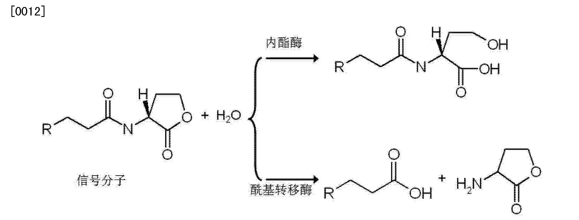 Figure CN103153881AD00041