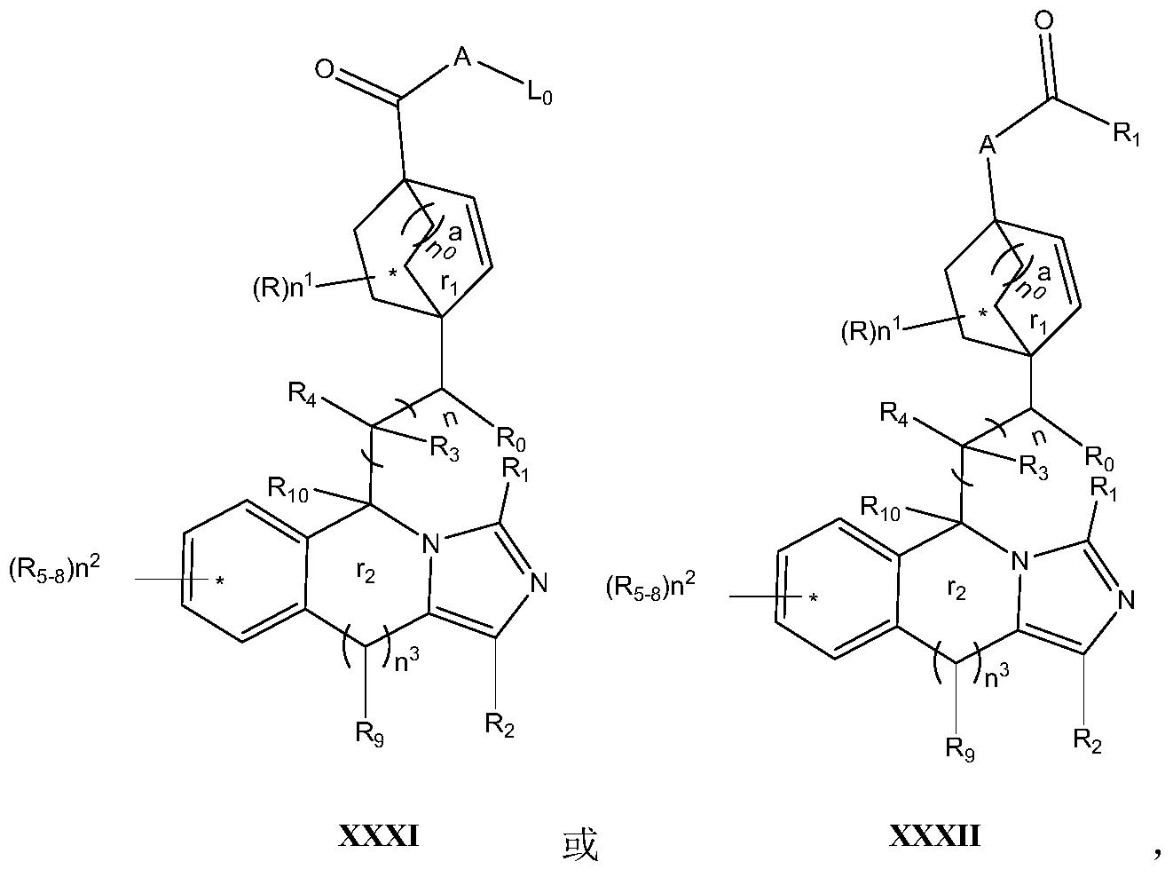 Figure PCTCN2017084604-appb-100015