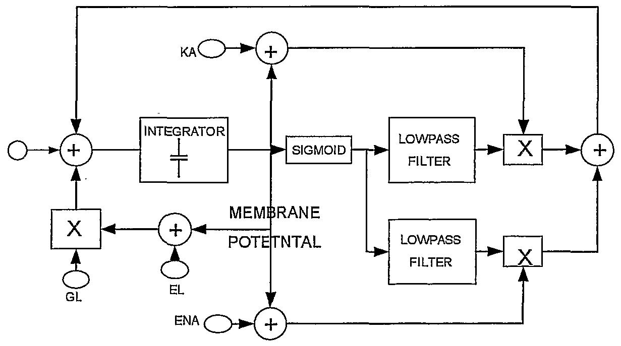 Wo2006005957a2 - Signal Processing Circuit