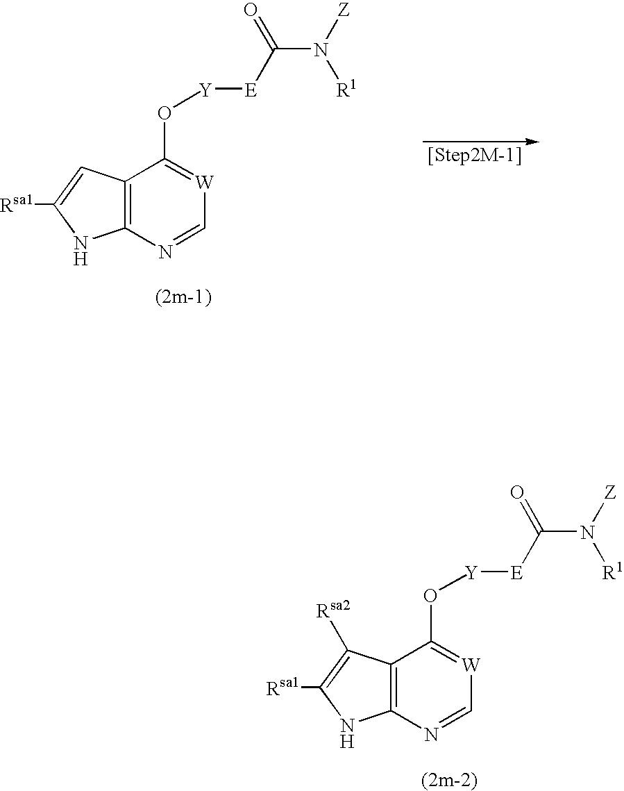 Figure US20040053908A1-20040318-C00101