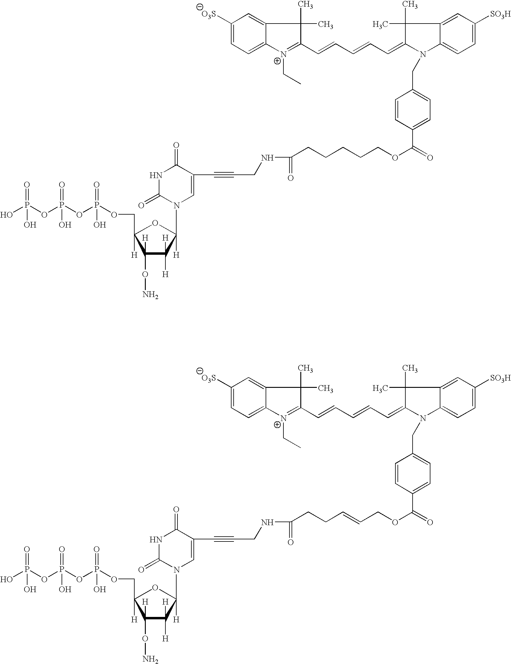 Figure US20070117104A1-20070524-C00006
