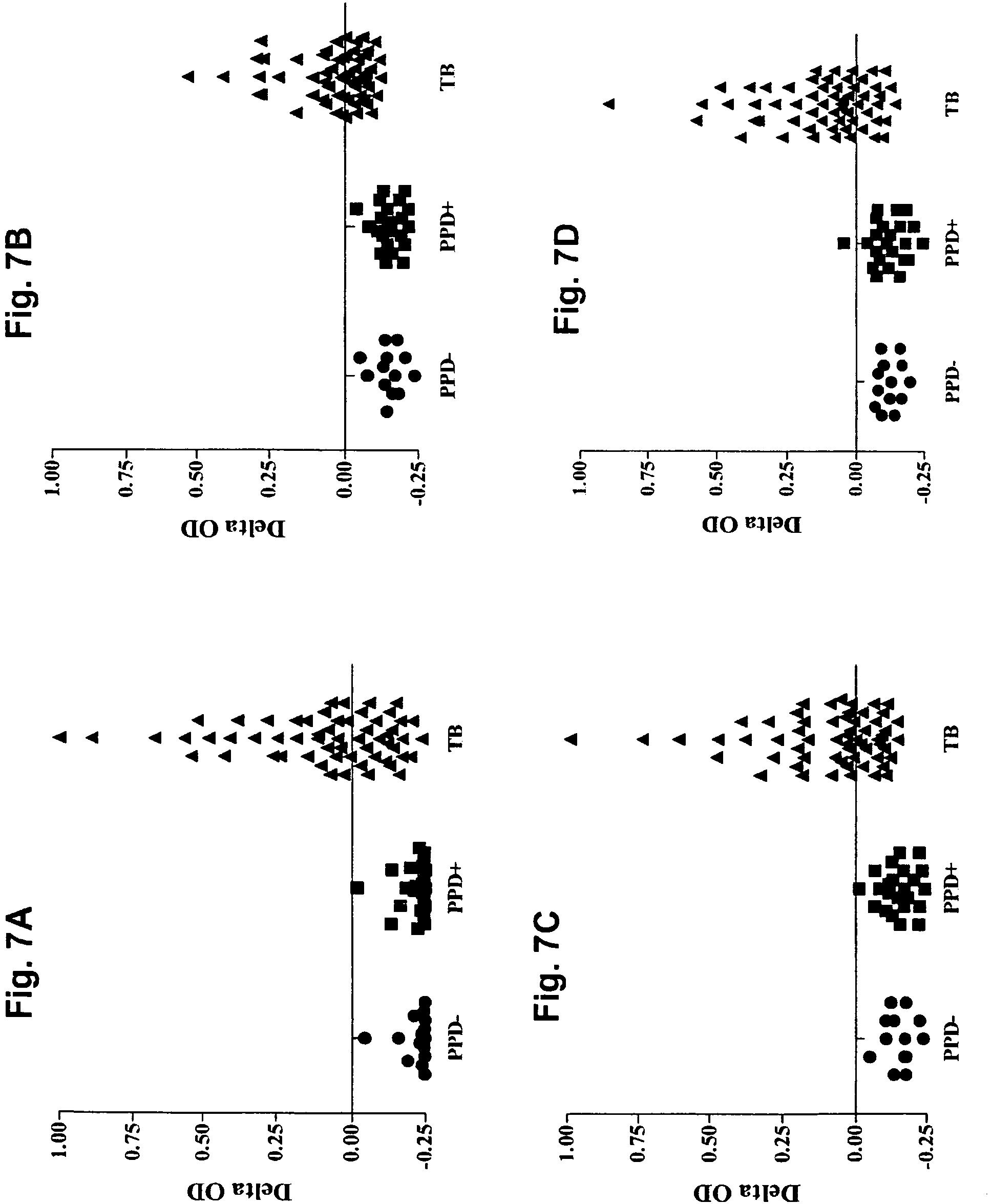 EP2281198B1 - Immunodominant mycobacterium tuberculosis