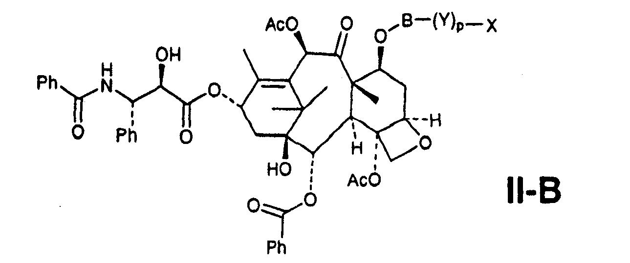 Figure CN101019024BC00033