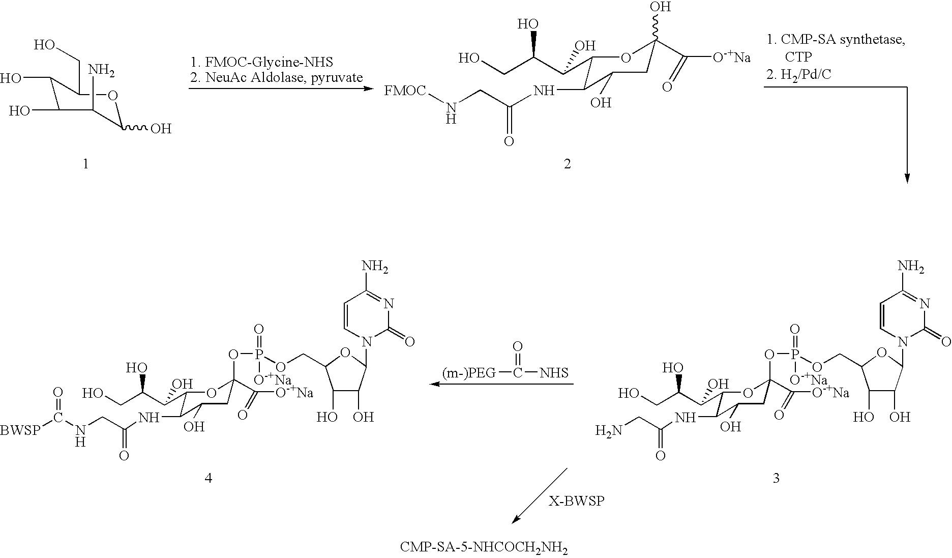 Figure US07803777-20100928-C00029