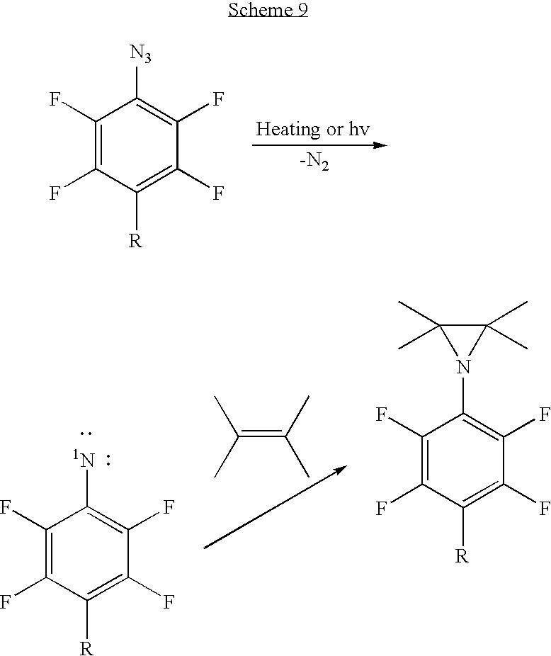 Figure US20100028559A1-20100204-C00011