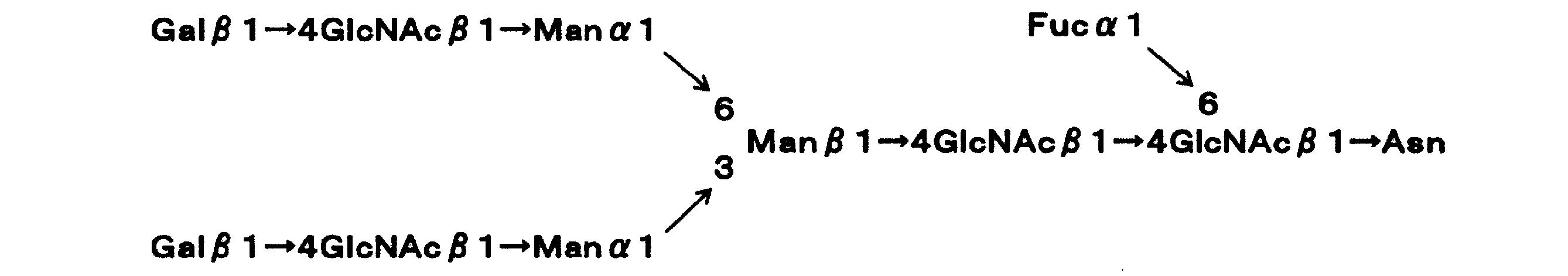 Figure JPOXMLDOC01-appb-C000009
