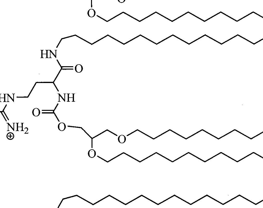 Figure CN102231979AD00531
