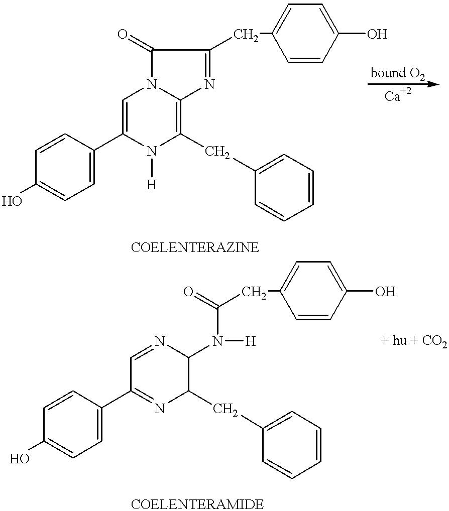 Figure US06416960-20020709-C00003