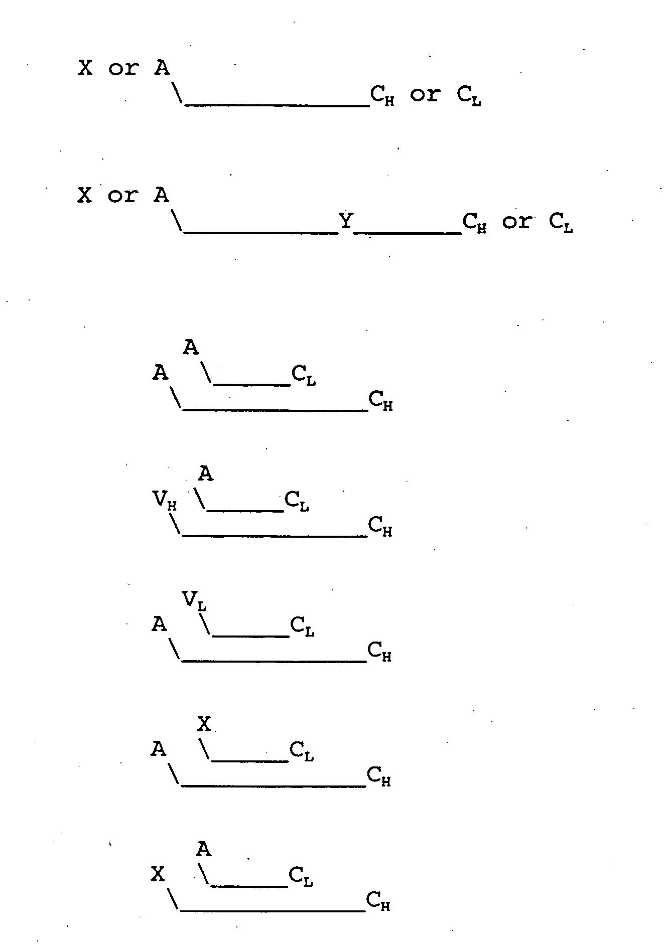 Figure US20060020114A1-20060126-P00001