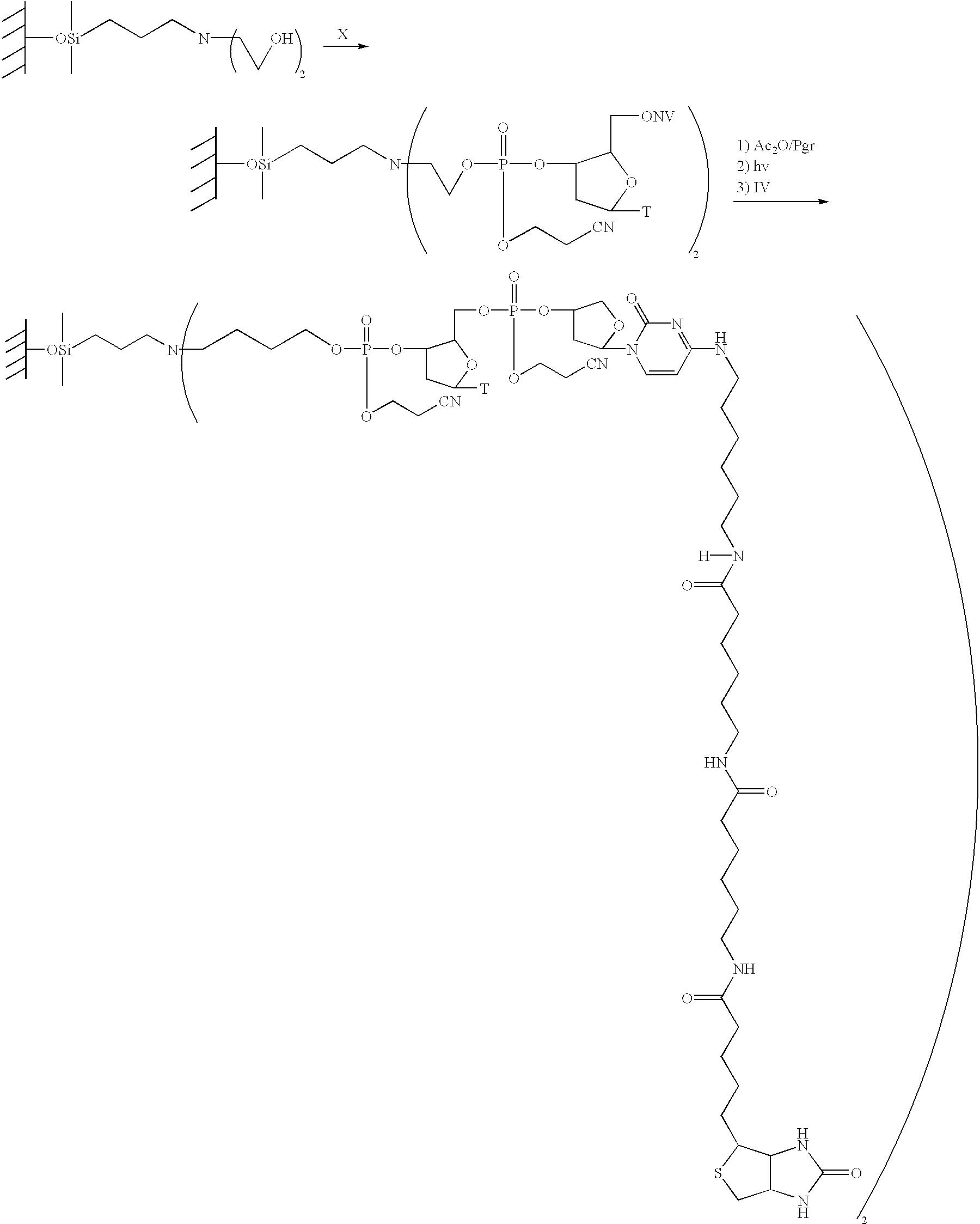 Figure US20020155491A1-20021024-C00016