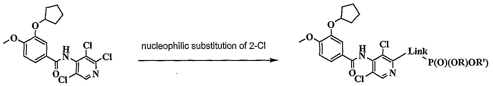 Figure imgf000333_0002