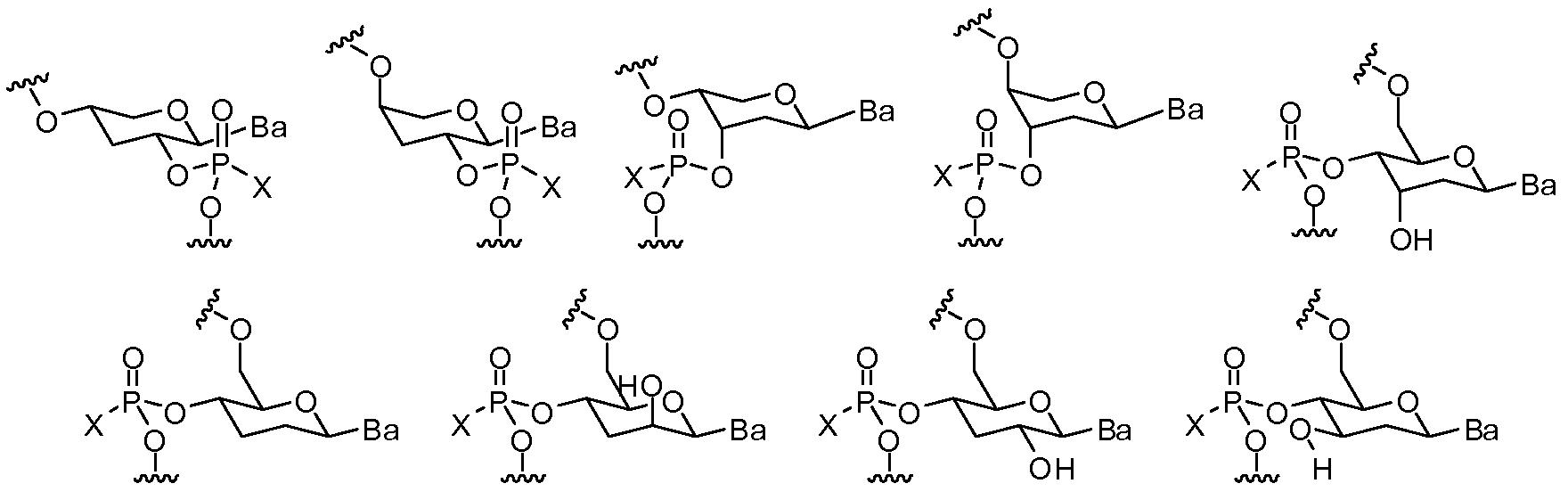 Figure pct00048