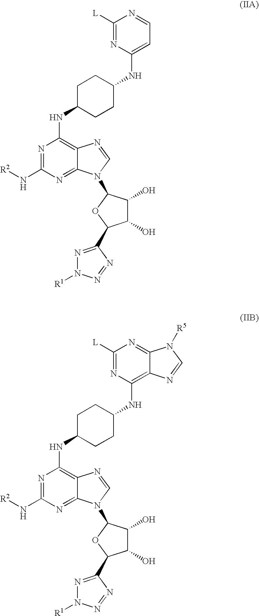 Figure US07985740-20110726-C00007
