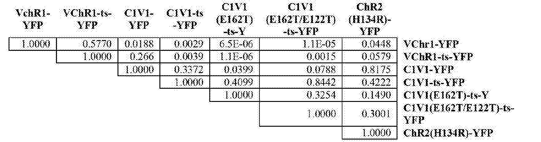 Figure CN103492564BD00262