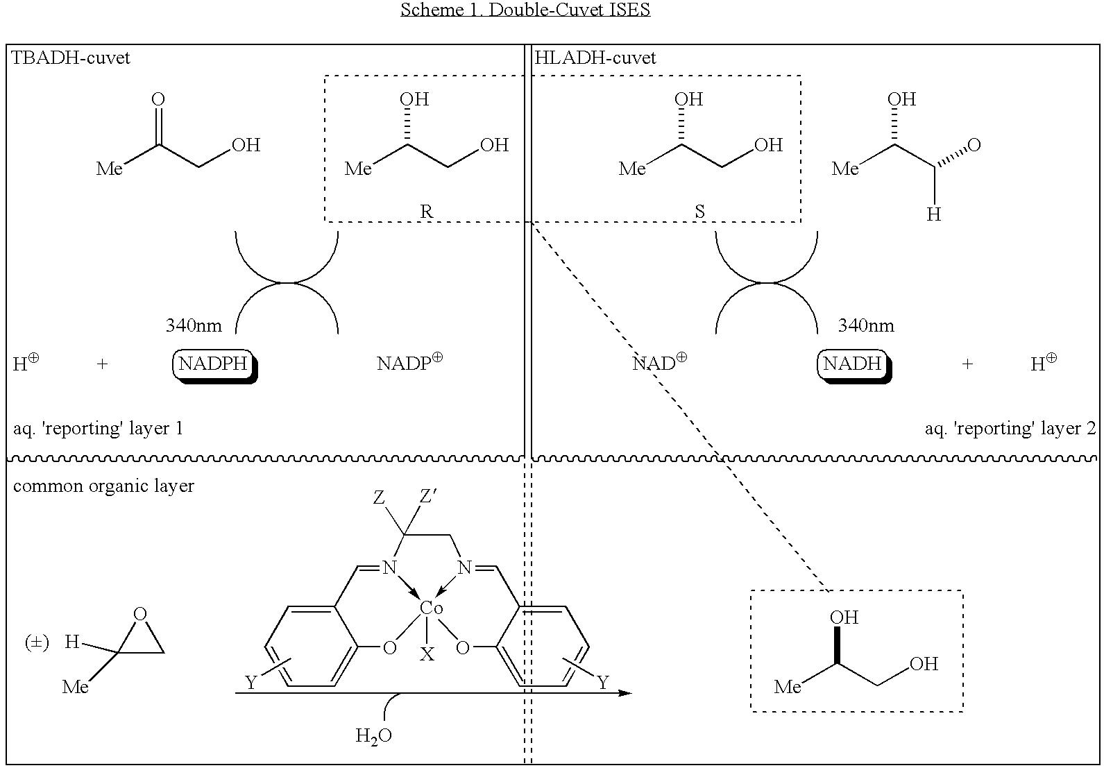 Figure US07767388-20100803-C00001