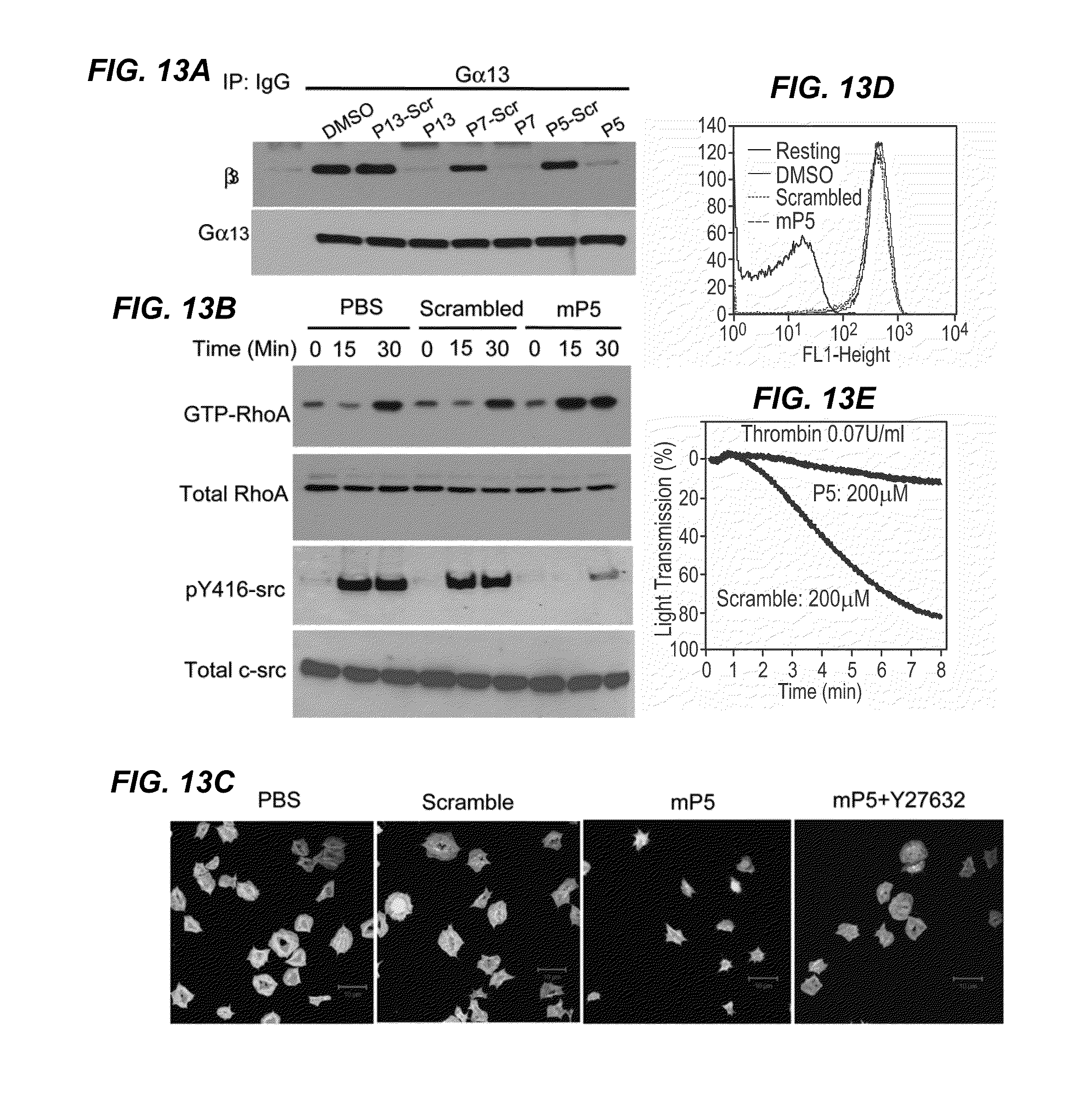 US20130072433A1 - Inhibitors of beta integrin-g protein