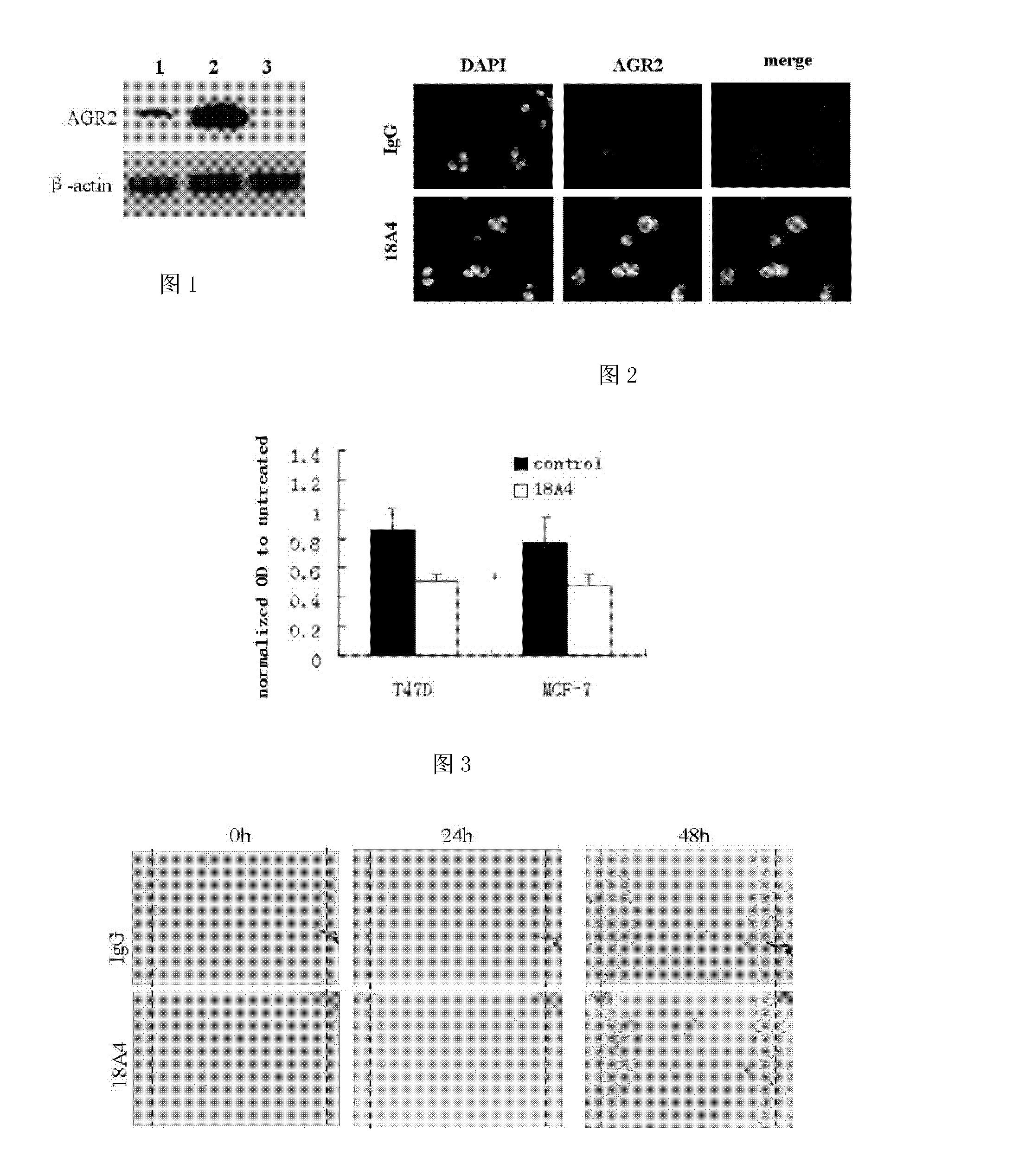 Figure CN102268089A00131