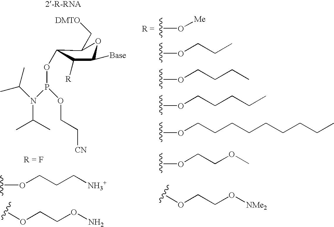 Figure US20060014144A1-20060119-C00044