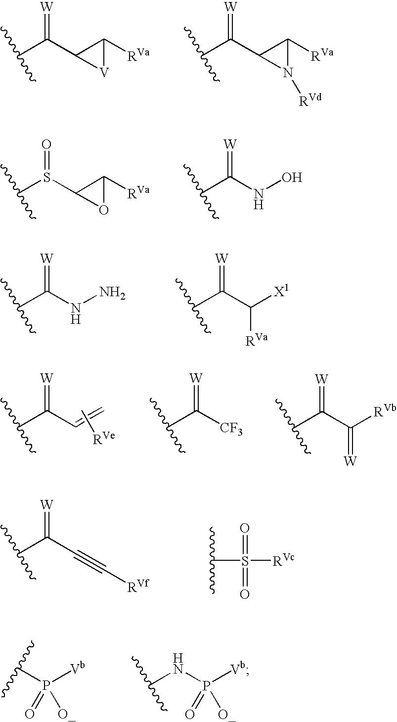 Figure US20040072849A1-20040415-C00138