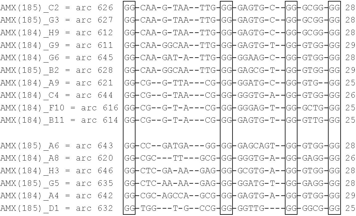 Figure US20060193821A1-20060831-C00005
