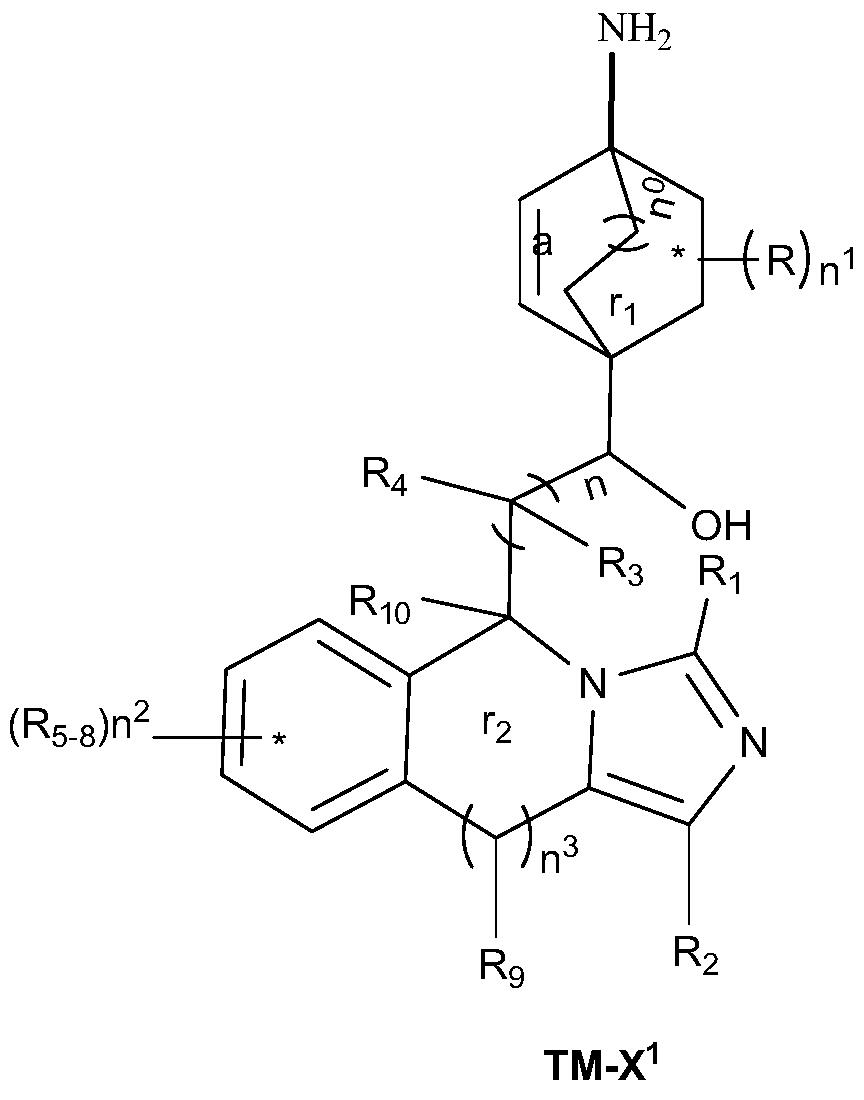 Figure PCTCN2017084604-appb-000061