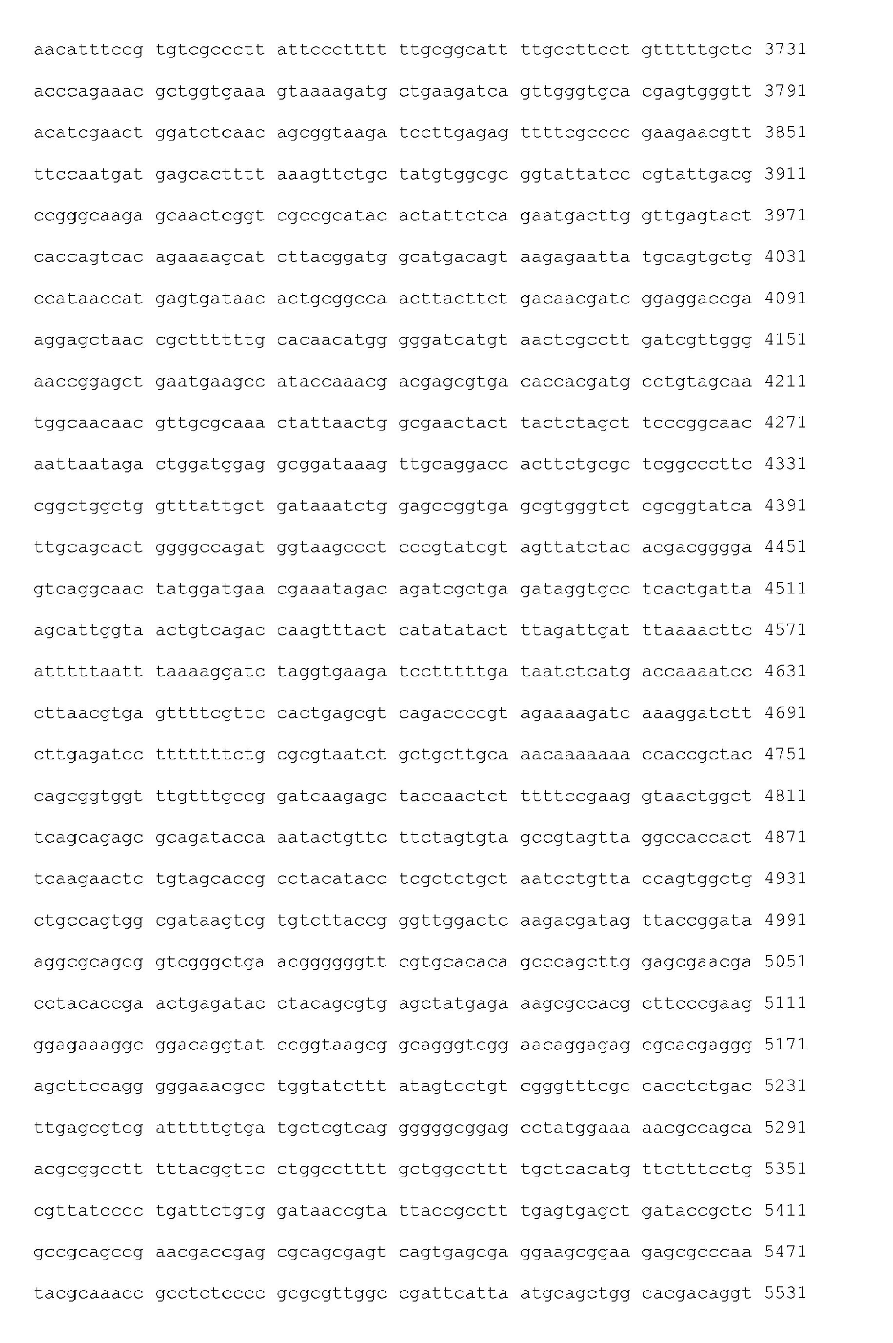 Nextion Proportional Fonts
