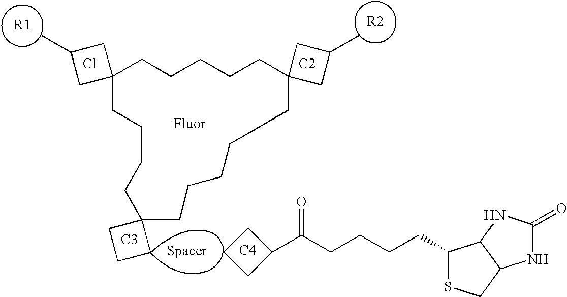Figure US20040241759A1-20041202-C00003