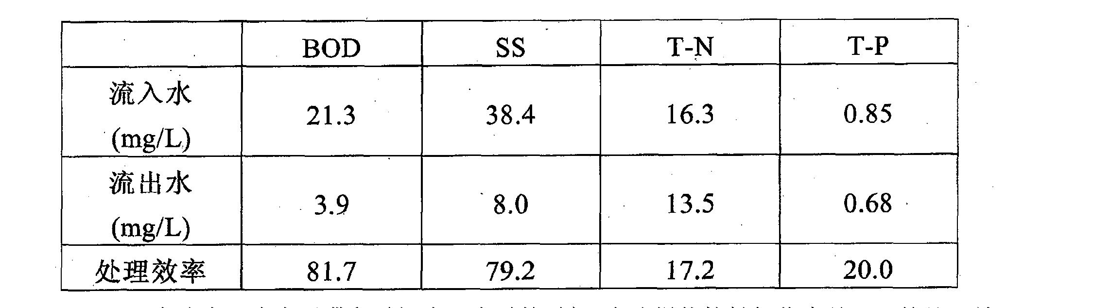 Figure CN102092889BD00091
