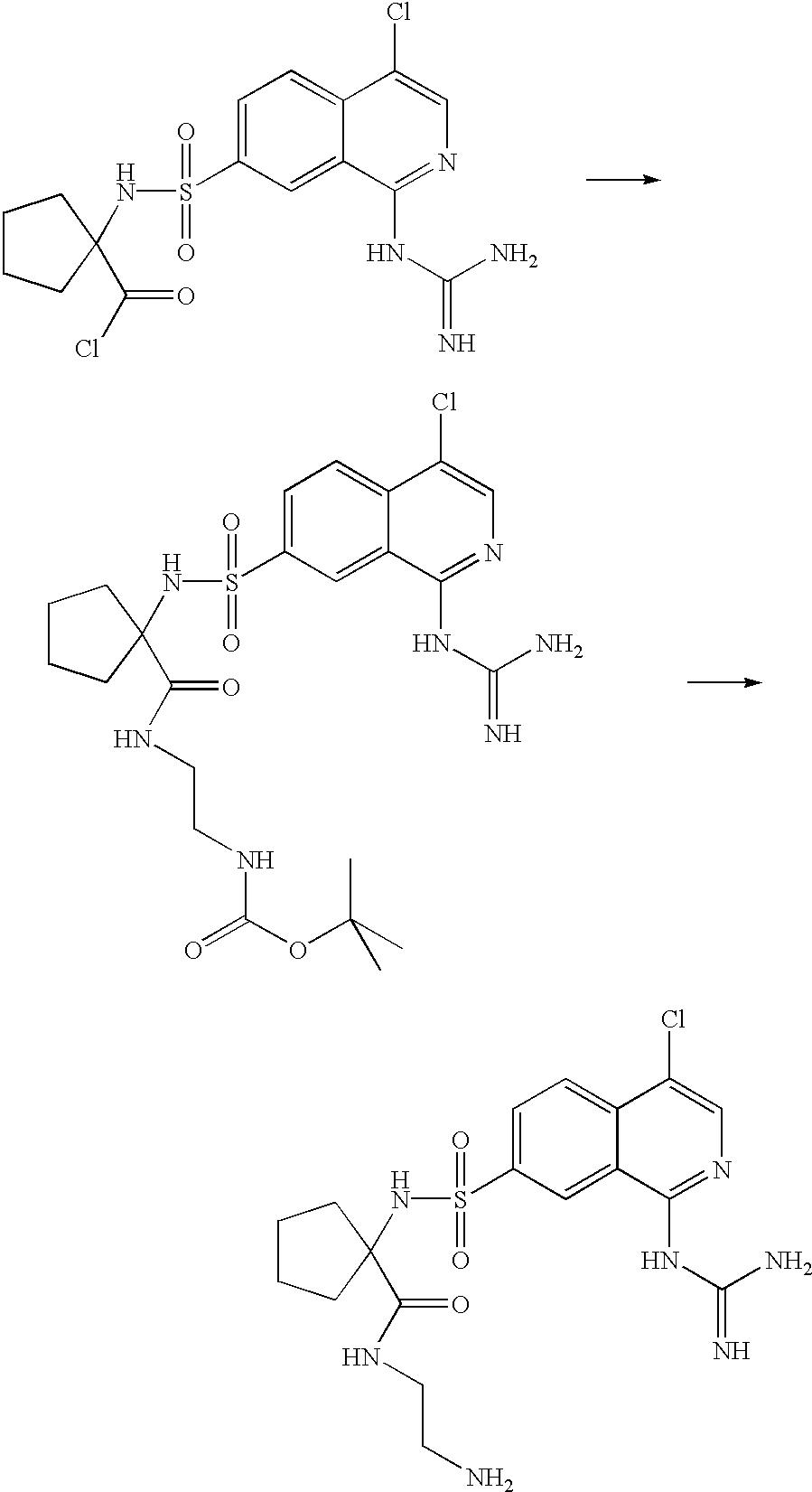 Figure US20030199440A1-20031023-C00113