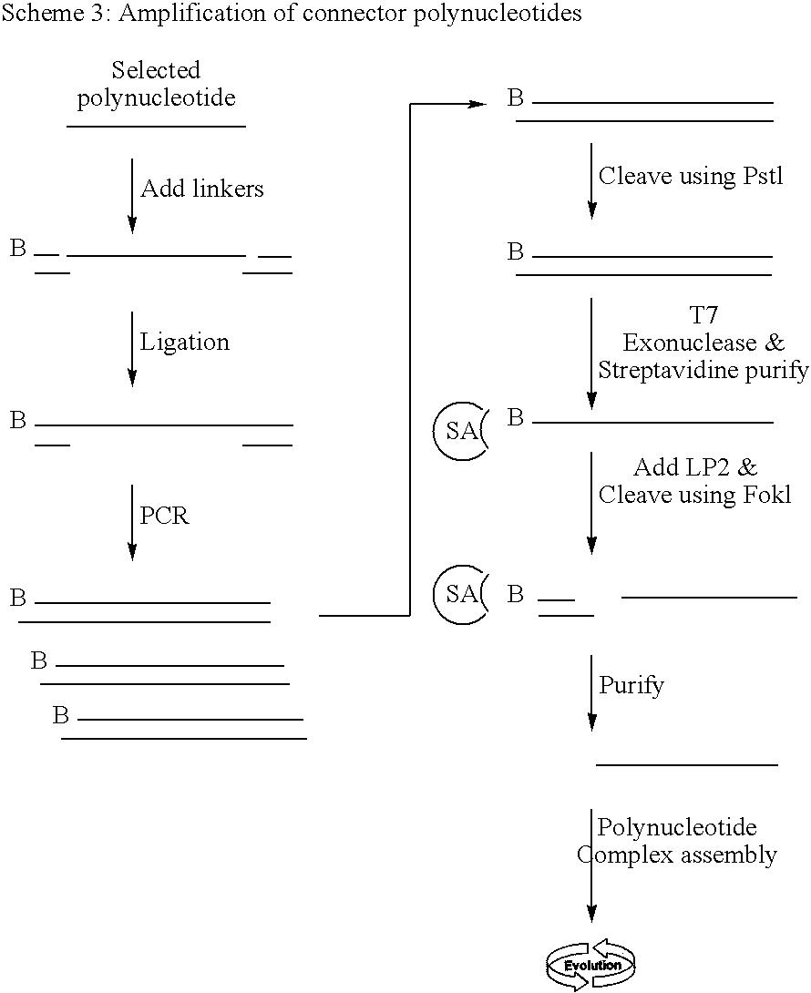 Figure US09121110-20150901-C00017