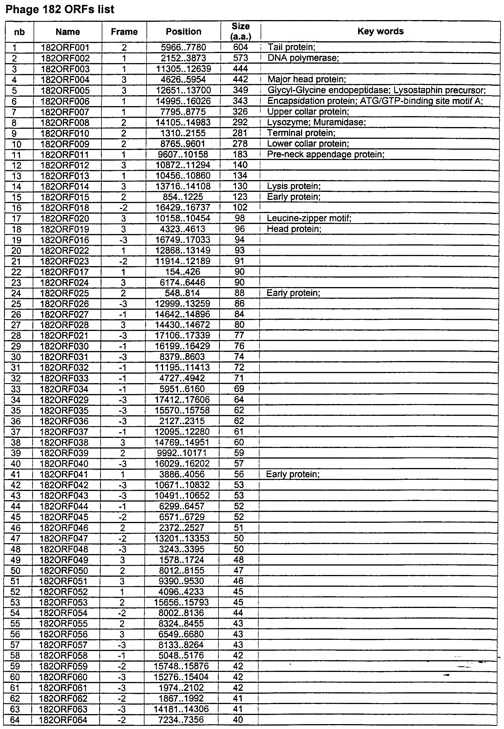 841GA 52 55